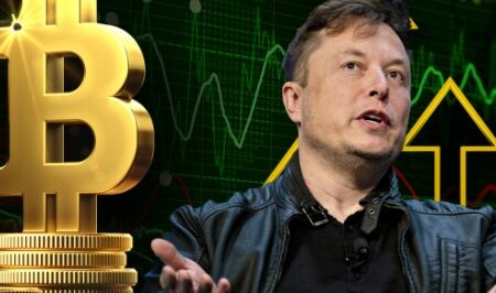 Bitcoin's decline slowed down with help from Elon Musk