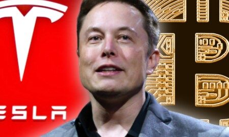 Elon Musk said I have not sold any of my Bitcoin